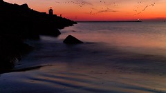 Late fishing at the lighthouse (Bn) Tags: lighthouse pier geese fisherman bravo noordzee ganzen northsea topf100 topf200 seaguls northseacanal ijmuiden wijkaanzee velsen avondrood velsennoord noordzeekanaal noordpier 100faves 200faves mywinners romanticwalk holidaysvacanzeurlaub 10degreescelsius ijmuidennewcastle vuurtorenvanvelsen vosplusbellesphotos lighthouseofvelsen picturesquelighthouse srpingsunset awalktothepier alohabeachclubalohabeachclub latefishingatthepier sunsetinvelsennoord
