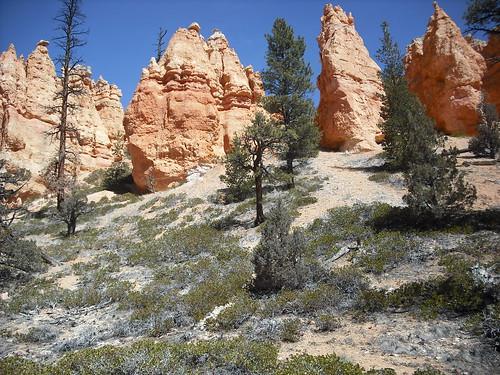 DSCF0099 (Bryce Canyon, Utah, United States) Photo