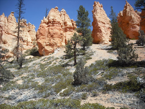 DSCF0099 (Bryce Canyon, Utah, United States) Photo