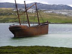 Wreck Lady Elizabeth in the harbour at Stanley, Falkland Islands