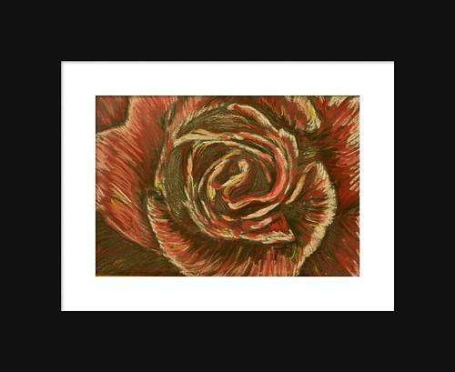Rose Pencil and Pastel Mixed Media