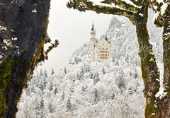 Neuschwanstein Castle (Luiz Pires) Tags: winter vacation snow castle beautiful fairytale germany bayern deutschland bavaria reina king princess magic prince tourist disney queen castelo neve rey princesa wonderland snowwhite neuschwanstein schloss magical reine castello rei breathtaking waltdisney hohenschwangau roi mrchen magie prinz fada fssen knig koenig rainha principe magica knigin myflickr principessa fiaba koenigin prinzessin brancadeneve cuentodehadas chateux roine contedefe contodefadas contodefada top20bavaria