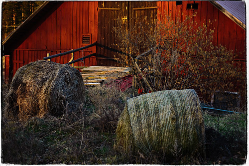 Bales of hay (_DSC7985)