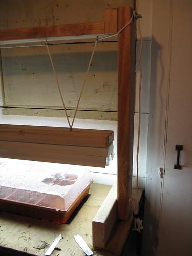 Seed Starter Set-up