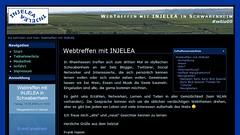 WebTreffen mit INJELEA in Schwabenheim