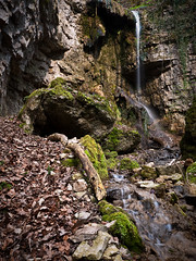 Hidden Oasis (andywon) Tags: cliff nature water forest germany deutschland waterfall rocks stream wasserfall schwarzwald blackforest badenwrttemberg wutachschlucht blumberg blackforestwaterfalls sturzdobel wutachflhe achdorf