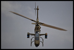 IDFAF AH-1 Cobra bow (NGPhoto.biz) Tags: israel cobra force aviation military air flight graduation ng academy  israeli hover iaf  ah1 ngp    nehemia   gershuni        idfaf ngphoto ngphotography   iafdf