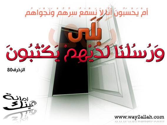 حملة عينك أمانة بالصور 3488956277_344603bb0