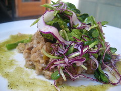Spring Mint Pea and Porcini Risotto