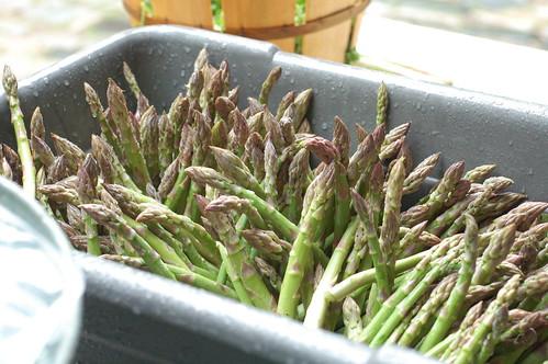 unbunched asparagus