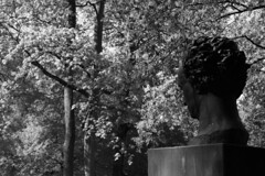 Goethe mdiatif (Instantsmagic) Tags: sculpture heidelberg parc goethe neckar buste