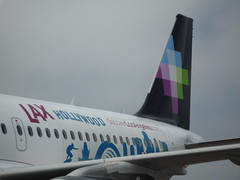 Volaris LAX Decal