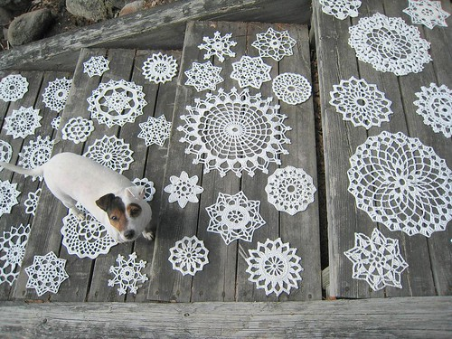 Doilies on the stair. And Papu!, WIP