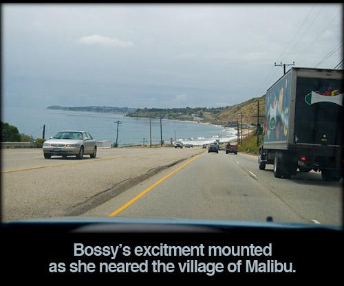 malibu-distance-iambossy