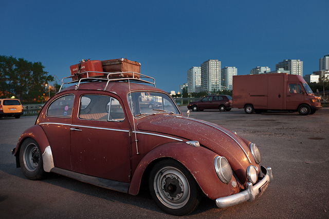 The red beetle
