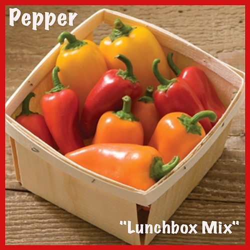 """Pepper """"Lunchbox Mix""""  — Photo Courtesy Welby Gardens and Hardy Boy Plants"""