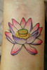 Flor de lótus Lotus flower