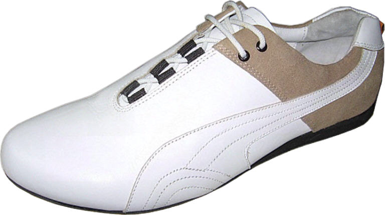 The Lead Shoe