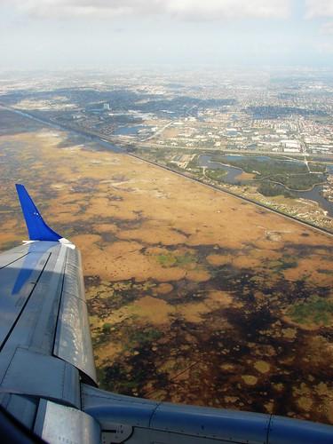 Everglades 003