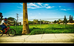 Lazy Sunday (isayx3) Tags: street blue sky house tree guy green field bike bicycle clouds nikon riverside 28mm sigma palm mexican hood f18 homegardens