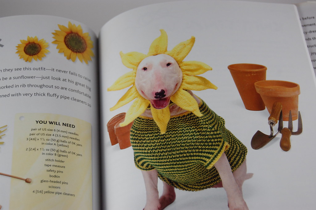 Doggy Sunflower