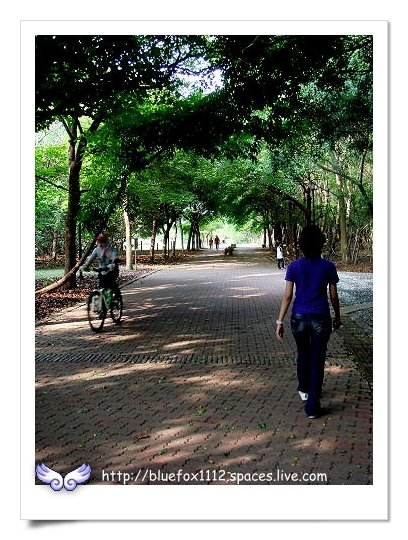 090418-2高雄都會公園15_綠色隧道