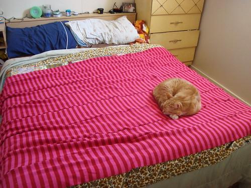 my blanket!!