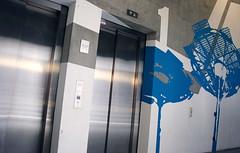 HAW Hamburg (WANDADEL) Tags: urban modern corporate design raum hamburg style grau grafik stairway business identity bild konzept beton wort abstrakt hochschule haw treppenhaus flchen sichtbeton gestaltung wandgestaltung wandadel