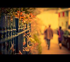 ~ Evening Stroll ~ (Komatoes) Tags: road street uk fence 50mm nikon pavement walk explore sidewalk devon nikkor f18 stroll fp impressionist totnes d40 nikond40