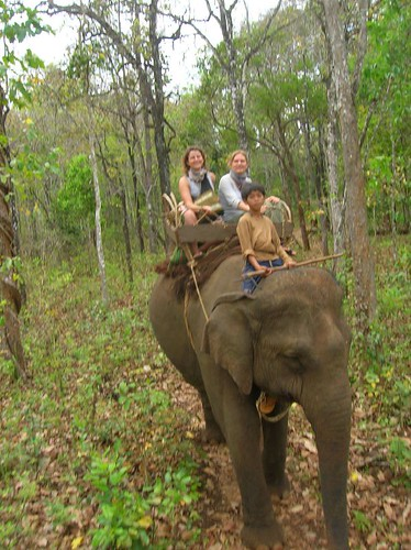 Elephant trekking outside Sen Monorom