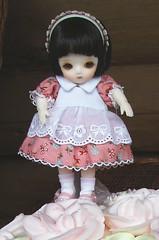 Special Version White Yoko~for ebay (hushiepie) Tags: doll bjd yoko bluefairy pocketfairy specialversionwhiteyoko