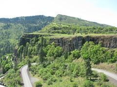 Columbia River Gorge (LaughingStarfish/dstroy) Tags: nature oregon hike gorge wildflowers hoodriver columbiarivergorge balsamroot tommccallpreserve