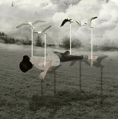 Day One Hundred (Emleigh Westland) Tags: trees shadow seagulls grass fog photoshop levitation secondlife brushes