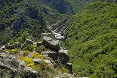 Les Gorges du Chassezac  (Cévennes)