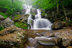 Dark Hollow Falls-6 (Armughan-) Tags: longexposure water landscape waterfall nikon day weekend shenandoah 2009 bigmeadows waterscape 1735mm shenandoahnationalpark darkhollowfalls d700 afsnikkor1735mmf28 hoyahdcircularpolarizer nikond700shenandoahmemorialdayweekend2009 nikond700shenandoahmemorial