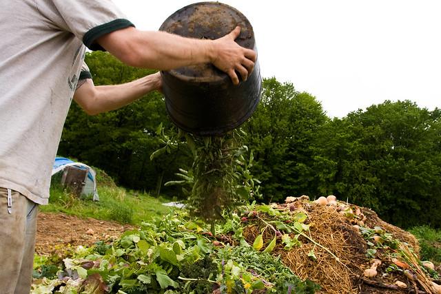 ปุ๋ยอินทรีย์ กับหลักการของการทำเกษตรอินทรีย์
