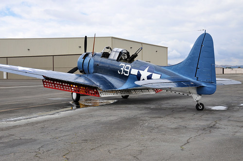 Warbird picture - Douglas SBD-5 Dauntless