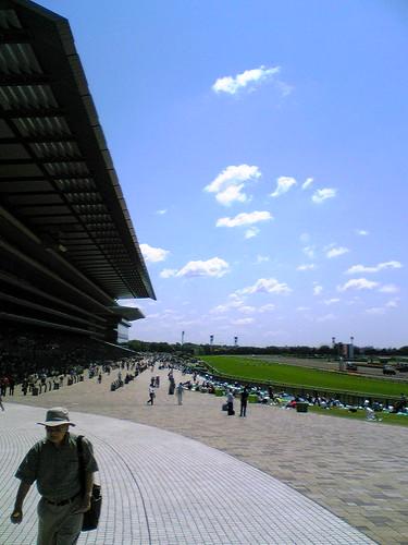 東京競馬場 2009/06/07