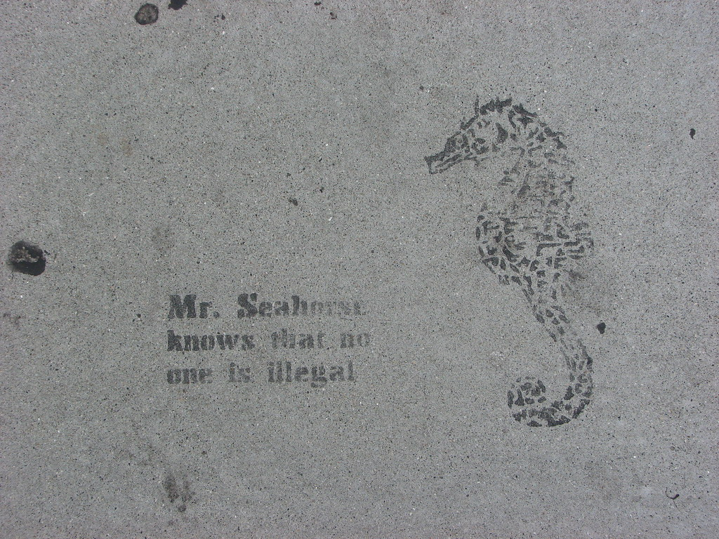Mr. Seahorse is wise.