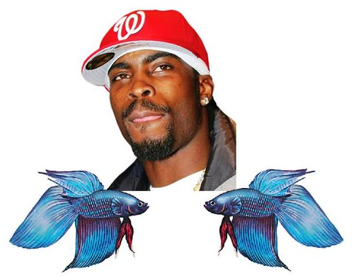 Michael Vick Fighting Fish Scandal!