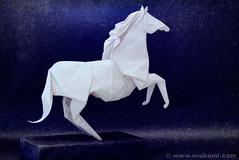 Roman Diaz Origami Horse (Himanshu (Mumbai, India)) Tags: sculpture horse india art wet animal modern paper origami roman contemporary craft poland polska mumbai folding diaz modele łódź rzeźba polskie sztuka składanie nowoczesna papieru papierowe orukami himanshuagrawal himorigami himanshuorigami