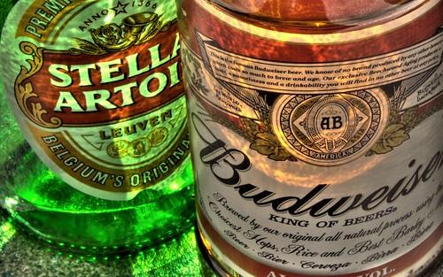 Sunshine and Beer Bottles