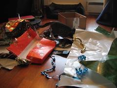 Christmas paper! (zoeselina) Tags: kittens february09 mojoandsushi
