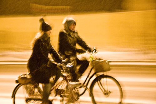 Snowstorm Bicycle Conversation