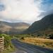 Connemarra - Ireland Study Abroad