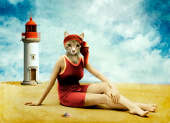 at the beach (Martine Roch) Tags: portrait pet lighthouse art love beach animal lady cat vintage sand tabby shell surreal minx photomontage elegant manray digitalcollage petitechose martineroch flypapertextures