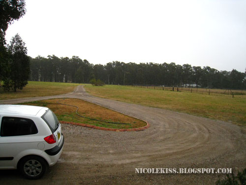 rented car in hunter valley
