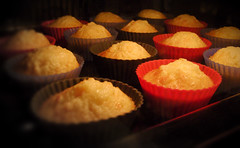 the muffin madness continues