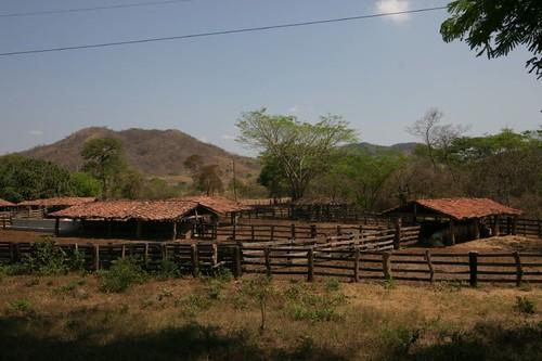 Hacienda, Honduras.