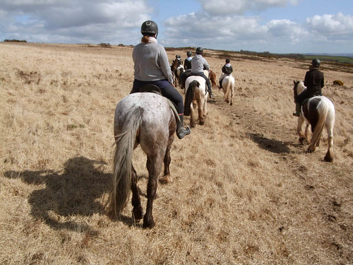 Poke weekend away: pony trekking